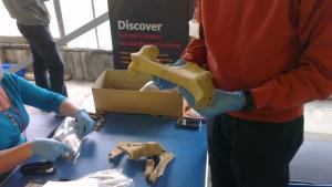 Big bone (yeah!)