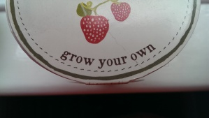 Grow Your Own Curator?
