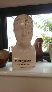 Anyone interested in Dog Phrenology?