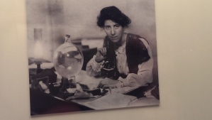 Marie Stopes, feminist, eugenicist and palaeobotanist