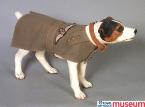 RFC dog jacket. Dogs were an airman's best friend. They were popular mascots and regularly appear in photographs of air and ground crews.