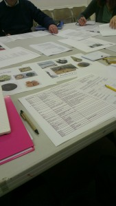 Assessing the collection as part of the HLF bid