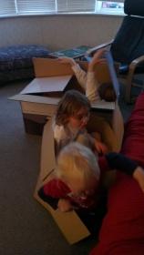 Everyone loves a cardboard box