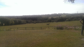 Great view from the Roman villa site Keston.