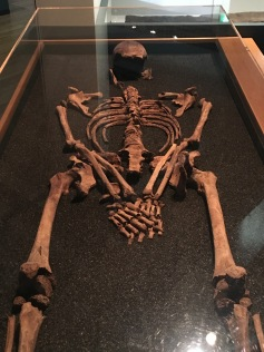Analysis delves into ancestry of the skeletons