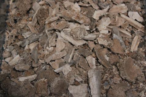 Pieces of cremated bone.