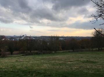 Beautiful park surroundings