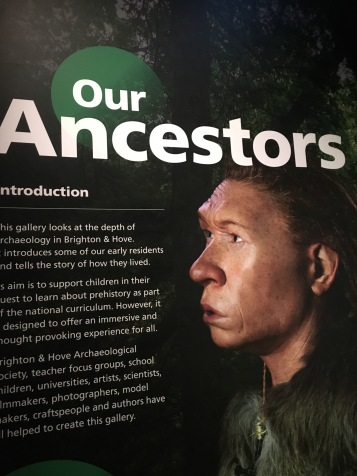 The gallery looks at our ancestors over a 500,000 year period.