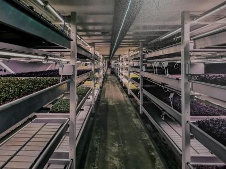 Growing Underground facility 2018